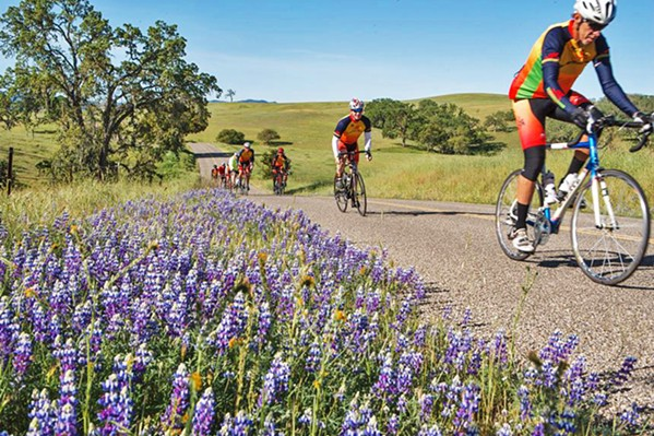 AROUND THE BEND Delayed due to COVID-19, the 12th annual Tour of Paso will take place on Nov. 1. - PHOTO COURTESY OF CANCER SUPPORT COMMUNITY CENTRAL COAST