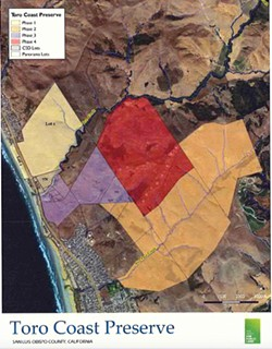 PRESERVATION Morro Bay elects to purchase Dog Beach in an effort to preserve the space for public use. - IMAGE COURTESY OF THE CITY OF MORRO BAY