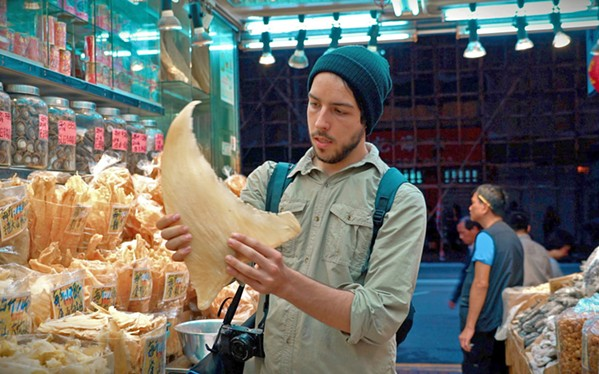 SHARK FIN DUPE Documentarian Ali Tabrizi reveals the ugliness and dishonesty of the worldwide seafood industry, in Seaspiracy, screening on Netflix. - PHOTO COURTESY OF AUM FILMS