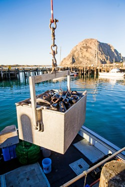 OUT OF WATER Commercial fishermen in Morro Bay, and along the Central Coast, are concerned a potential wind farm will impact their livelihoods. - FILE PHOTO BY JAYSON MELLOM