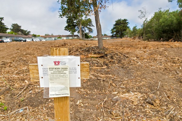 STOP WORK SLO County issued a stop work order to Peoples' Self-Help Housing on June 24 over its clearing of vegetation on a vacant lot it hopes to develop into a tiny home project. - PHOTO BY JAYSON MELLOM
