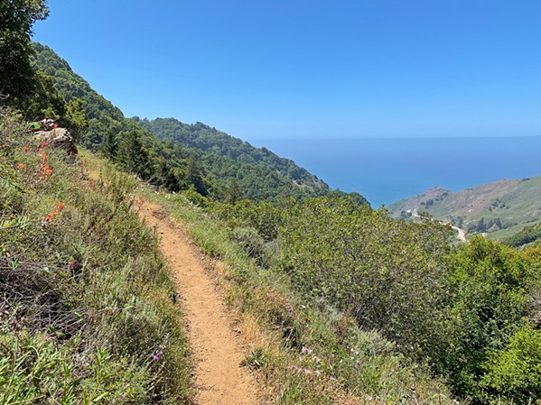 TAKE A HIKE Cal Poly students get cheap outdoor equipment rentals from Poly Escapes, and that gear can set you trekking along almost any trail in Big Sur for a day-trip or a night away from campus. - PHOTOS BY CAMILLIA LANHAM