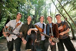 IT'S A STRING THING:  Numbskull and Good Medicine Presents bring Hot Buttered Rum to SLO Brew on Nov. 4. - PHOTO COURTESY OF HOT BUTTERED RUM