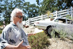 JAGGED AROUND :  Bob Finley says he's got more in store for County Code Officials if they continue to insist his 1971 Jaguar, which he calls yard art, is a commercial sign. - PHOTO BY STEVE E. MILLER