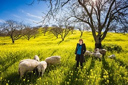 REPORTER IN THE FIELD:  Over the past year, New Times Flavor writer Hayley Thomas has traveled across the county in search of epicurean adventure. She found a few sheepish friends at Adelaida Winery in Paso Robles last spring. - PHOTO BY KAORI FUNAHASHI