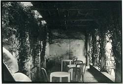 Art-linneas-patio-1995.jpg