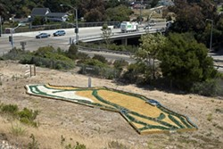 CALIFORNIA DREAMING :  Artist Richard Dunn devotes his land to a whimsical topological state map he's constructing near the freeway. - PHOTO BY STEVE E. MILLER
