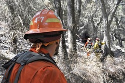 ON THE FRONT LINES:  Inmate firefighters go about their physically demanding work side-by-side with civilian firefighters as part of a joint Cal Fire and California Department of Corrections and Rehabilitation program. - PHOTO BY CAMILLIA LANHAM