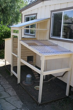 CHICKEN PALACE!:  That's what four weeks and $600 in materials buys you. - PHOTO BY GLEN STARKEY