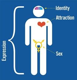 GENDER EXPRESSION:  This infographic, inspired by information from Sam Killermann's blog, itspronouncedmetrosexual.com, helps illustrate the way people express their gender and sexual preferences. - INFOGRAPHIC BY HEATHER WALTER