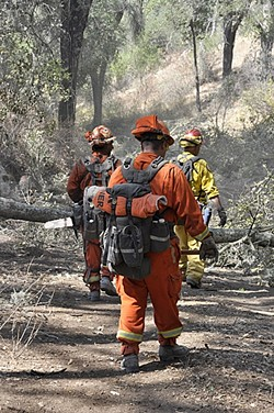 HARD LABOR:  The inmate crews fighting the Cuesta Fire often work long hours digging trenches, setting back fires, and clearing brush and trees, all for $1 a day. - PHOTO BY CAMILLIA LANHAM