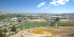 TROUBLED :  Recycled water has been playing havoc with the Damon Garcia sports fields. - PHOTO BY STEVE E. MILLER