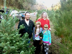 """JUST PERFECT :  The Chaneys stand by their little Scotch Pine, which the girls said was the """"perfect tree."""" - PHOTO BY JONO KINKADE"""
