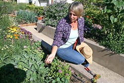 THE ART OF GARDENING :  The Avant-Gardener, Annette Pollock, brings 25 years of gardening experience to clients that span wineries to private estates. - PHOTO BY HAYLEY THOMAS