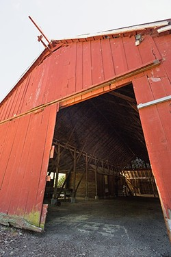 BIG RED:  The planned demolition and replacement of the dilapidated dairy barn at Pasolivo is part of a bigger issue over a new permit sought by the company. - PHOTO BY KAORI FUNAHASHI