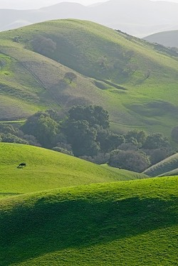 EVENTS CENTER OR RANCHLAND? :  On July 30, SLO County planners will discuss restricting large events on non-winery agricultural land. - FILE PHOTO