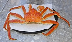 CRAB A DUB DUB :  The Alaskan red king crab, prized for its sweet crab meat, weighs an impressive 8 to 10 pounds each. - PHOTOS BY DAN HARDESTY