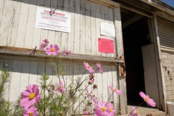STAY OUT :  County code enforcers condemned most of the buildings on Dan DeVaul's 72-acre ranch on Aug. 5. - PHOTO BY STEVE E. MILLER