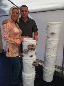FUNGAL COUPLE:  Jiri Pravec and his wife, Lisa, grow with robust oyster mushrooms on their Edna Valley farm. Pravec's labor of love, Arboreal Bounty Fine Gourmet Mushrooms, is ready to ramp into full production before summer's end. - PHOTO COURTESY OF JIRI PRAVEC