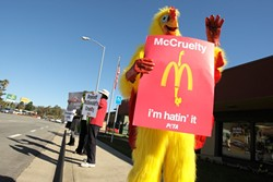 DIE HARD AND FEATHERED :  PETA 2 activist Mickey Kudia led a group of protestors outside of a McDonald's restaurant in San Luis Obispo. - PHOTO BY STEVE E. MILLER