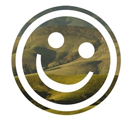 Opinion-Happiness0.jpg
