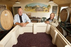 ONCE MILK, NOW WINE:  At the old milking barn on the Filipponi Ranch on the outskirts of San Luis Obispo, winemaker Peter Cron and Herb Filipponi showed off a bin of tempranillo grapes that's about to be pumped into barrels. - PHOTO BY STEVE E. MILLER
