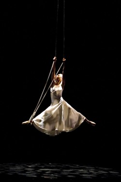 WHITE WIDOW : - PHOTO COURTESY OF MOMIX