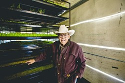 HYDROPONIC GRASS:  Jack Varian stands next to one of his fodder sprouting racks, where he sprouts barley seed to feed to his cattle. - PHOTO BY HENRY BRUINGTON