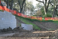 BULLDOZER MADNESS:  Neighbors at the top of this Atascadero hill were never notified that the wooded gentle slope near their homes would be converted into a steep, erosion-prone drop-off. - PHOTO BY CHRISTOPHER GARDNER