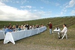 IN THE VINES :  Steve Beckman (left) and Kerry Damskey of Palmeri (right) celebrated the recent Syrah Symposium at Beckmens Purisima Mountain Vineyard. - PHOTO BY NELL CAMPBELL, FOR THE SYRAH SYMPOSIUM