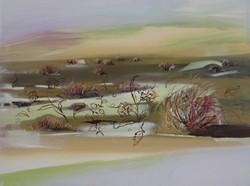 BARREN LANDSCAPE : - IMAGE BY CAROL PAQUET