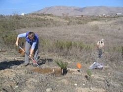 POLY PLANTERS :  Kate Wilkin (left) and Mark Krist (right) recently shoveled mulch and spread soil as part of a project to transform a used mining pit into an ecological triumph. - BY KATHY JOHNSTON