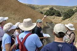 OVER THERE:  Land Conservancy board member at large Randy Knight points to the ridgeline, describing some of the trails farther inland from the Pacific Ocean. - PHOTO BY CAMILLIA LANHAM