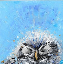 CATCHING AIR AND ZZZZS:  An owl rests its eyes in the piece 'Nappy Time' by Jeannine Emmett. - IMAGE COURTESY OF JEANNINE EMMETT