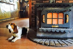 LAZY SUNDAY :  Local regular Annabelle gets warm by the wood burning stove in the Reyes Creek Bar and Grill. - PHOTO BY CAMILLIA LANHAM