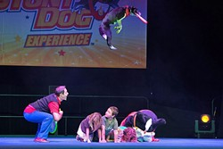 PLAY FETCH!:  One of Chris Perondi's pups jumps over a row of humans to catch a Frisbee during a show. - PHOTO COURTESY OF CAL POLY PERFORMING ARTS CENTER