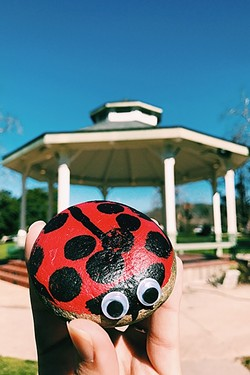 GOOD VIBES :  A ladybug rock with googly eyes is deposited at Mitchell Park in downtown SLO. - PHOTO COURTESY OF CITY OF SAN LUIS OBISPO