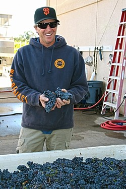 FRUITFUL :  Zenaida Cellars owner/winemaker Eric Ogorsolka is rich with mourvedre grapes this harvest. - PHOTO BY HAYLEY THOMAS CAIN