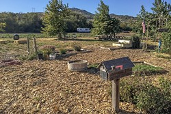 FARM TO TABLE:  Some picnic tables near an herb garden make for a good place to enjoy an apple. - PHOTO BY TREVER DIAS