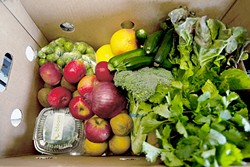 DON'T WASTE!:  August is Ugly Food Month at the Bethel Lutheran Church in Templeton, where a variety of speakers are lined up to address the congregation each Sunday on topics like gleaning and drought farming, culminating in an ugly food banquet on Aug. 28. All the services are open to the public. - FILE PHOTO BY STEVE E. MILLER