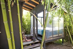 TROPICAL DELIGHT Designer Isaac Horton's Los Osos rental has been made into a lush bamboo-filled forest with a raised outdoor bedroom next to a koi pond and waterfall, with the building constructed with easy-to-disassemble screws. - PHOTO BY JAYSON MELLOM