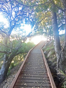STURDY PATH Cerro San Luis' new M trail features several wooden footbridges as it winds up to steep terrain. - PHOTO BY PETER JOHNSON