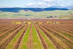 WATER DISTRICTS An election to form a new water district near Paso Robles, the Estrella-El Pomar-Creston Water District, is coming to a close. - FILE PHOTO BY JAYSON MELLOM