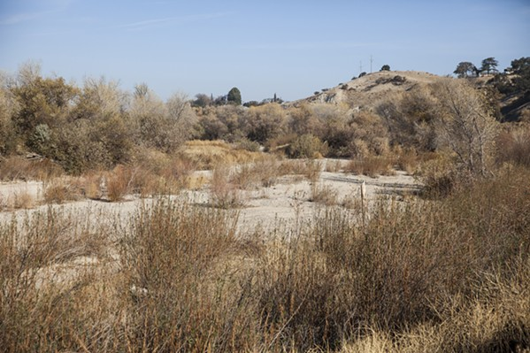 NO ONE IN SIGHT Since the city of Paso Robles staged a clean-out of several homeless encampments in the Salinas Riverbed in 2016, police have routinely patrolled the area to keep it clear. - PHOTO BY JAYSON MELLOM