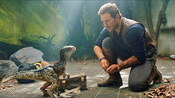 NEARLY EXINCT In Jurassic World: Fallen Kingdom, Owen (Chris Pratt, pictured) and Claire (Bryce Dallas Howard) must save the island's remaining dinosaurs when a formerly dormant volcano threatens to erupt. - PHOTO COURTESY OF UNIVERSAL PICTURES