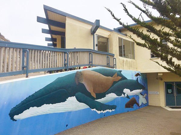 WHALES AND SEALS AND OTTERS, OH MY! Murals both outside and inside the museum offer beautifully rendered wildlife scenes. - PHOTO BY ASHLEY LADIN