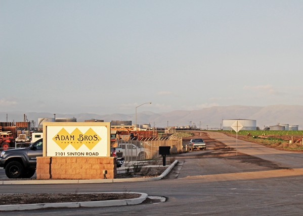 RECALL Adam Brothers Farming Inc. announced on Dec. 13 that sediment in a water reservoir near the farm's produce tested positive for E. coli O157:H7, the same strain reported present in romaine lettuce in early October and has since impacted scores of individuals in multiple states. - PHOTO BY JOE PAYNE