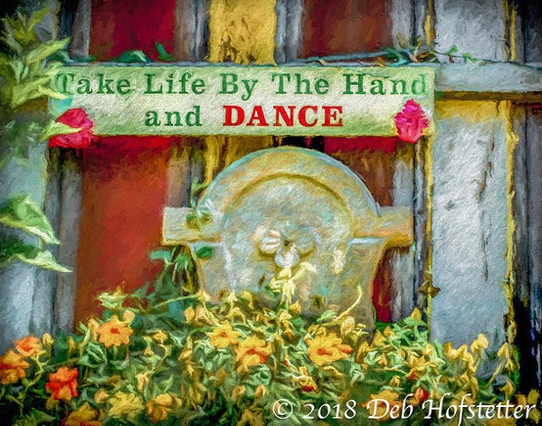 JUST DANCE This gardenscape photo was inspired by photographer Deb Hofstetter's love of dancing while she listens to music standing up. - PHOTO BY DEB HOFSTETTER