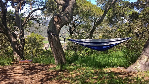 OFF THE PATH Hammocking is great when you find a spot that's secluded from a trail, and Ontario Ridge has just the spot. - PHOTOS BY KAREN GARCIA