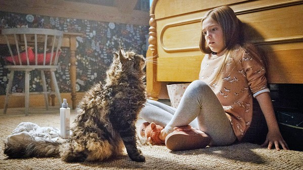 BAD KITTY! Ellie (Jeté Lawrence) discovers that her cat, which went missing for a day, is decidedly more hostile upon his return. - PHOTOS COURTESY OF ALPHAVILLE FILMS